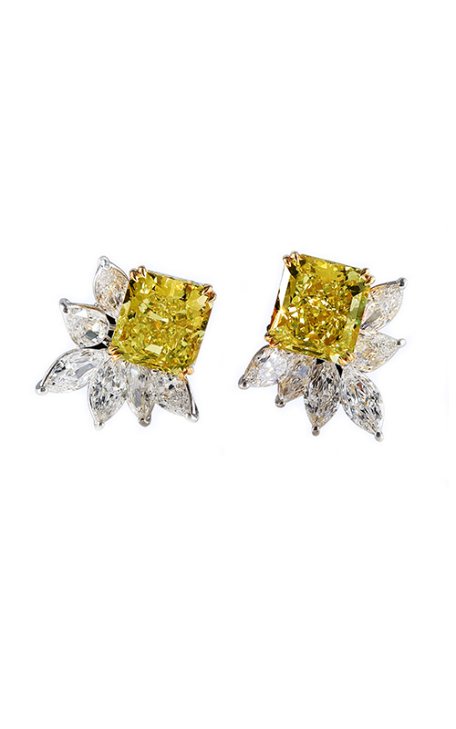 Julius Klein Earrings LE03354 product image