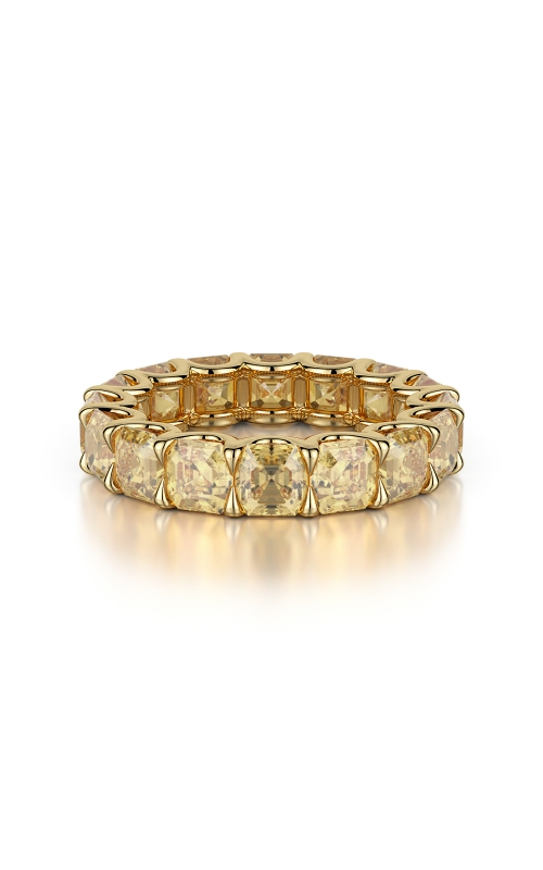 Eternity Band LR02261 product image